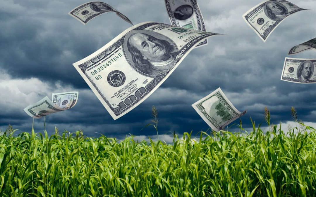 LAS ACTIVIDADES AGRICOLAS Y LA REFORMA TRIBUTARIA